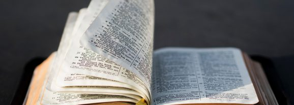 Too Busy to Read the Bible?