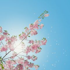 Spiritual Summer Time