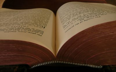7 Reasons to Study the Bible with the Covenanters