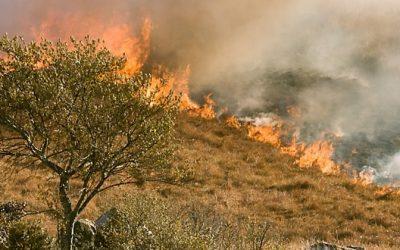 Catch the Flame – the Faith of the Gospel on Fire